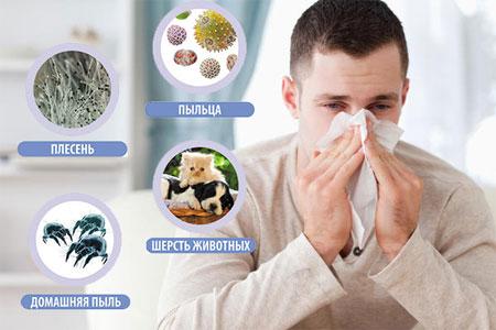 анализы на аллергию оренбург
