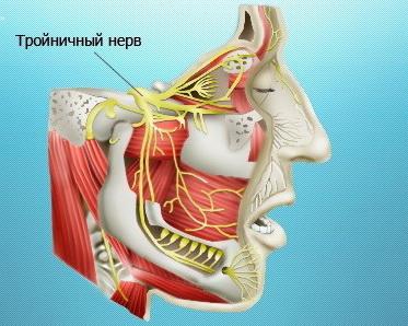 Лечение троичного нерва Харьков Ла Вита Сана